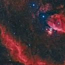 M78, Barnard's Loop, Flame and Horsehead,                                  Scott M. Stirling