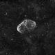 C27 - Crescent Nebula - Ha,                                  Greg Polanski