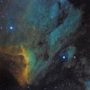 Pelican Nebula in HybridSHO,                                Rathi Banerjee