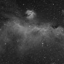 Sharpless in Monoceros - The Seagull Nebula [Sh2_292, Sh2_296, Sh2_297],                                G400