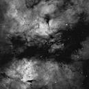IC1318 Sadr dust lane,                                Ruben Jorksveld