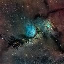 M 78 (NGC 2068, 2064, 2067, 2071),                                Alex Woronow