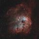 IC410 - The Tadpoles Nebula (HOO),                                Andrei