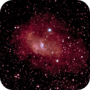 NGC 7635 Bubble Nebula,                                Robert Van Vugt