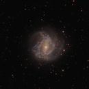 M83 Southern Pinwheel Galaxy,                                Filip Krstevski / Филип Крстевски
