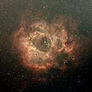 Rosette Nebula - backyard,                                FrankMagoo