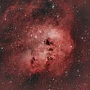 IC410 (Tadpole Nebula),                                Domenico Cataldi