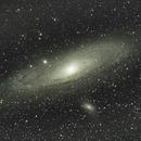 M31 - The Andromeda Galaxy,                                Tom Chitty