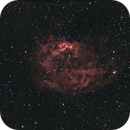 Flower nébula - Sh2-261= HaRVB DSLR,                                Francis Couderc