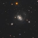 NGC 4151 in Canes Venatici,                                Steve Milne