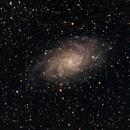 M33 - Triangulum Galaxy,                                Jared Holloway