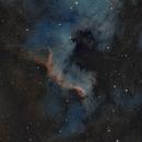 Cygnus Wall,                                gt1992