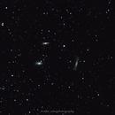 M65, M66, NGC3628 - Leo Triplet,                                Michal Vokolek