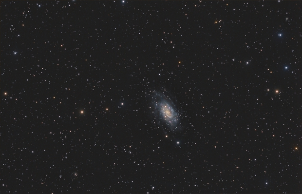 NGC2403 wide field,                                OrionRider