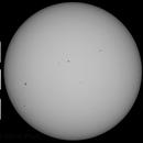 Sun in Whitelight   19th August  2014 , 10:00 BST    (203/231),                                steveward53