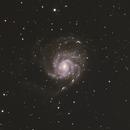 M101,                                carl monfils