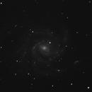 M101,                                iva