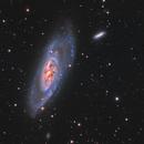 M106,                                Adam Landefeld