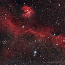IC 2177 Möwennebel,                                Niko Geisriegler