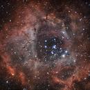 Rosette NGC2239,                    Jocelyn Podmilsak