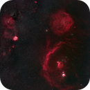 Orion and Rosette,                                rooftopastro.com