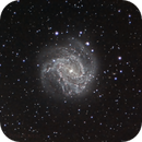 Southern Pinwheel Galaxy,                                Chris Kaiser