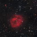 IC 5146,                                Tolga