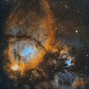 The Fish Head Nebula - IC 1795,                                Chad Leader
