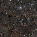 LBN 552. Molecular clouds in Cepheus,                                lizarranet