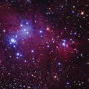 NGC2264, Christmas tree cluster / cone nebula,                                Mike Carroll