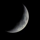June 7th Moon,                                Shawn Harvey