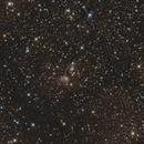 IC 4954 und IC 4955 im Sternbild Fuchs,                                Horst Twele