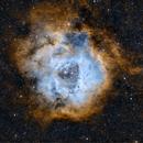 Rosette Nebula in SHO,                                Jeff Ridder