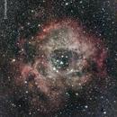 NGC 2244  Rosette Nebula,                                JayS_CT