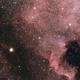 [Neb] NGC7000 - C20 (Nébuleuse de l'Amérique du Nord) @Popol,                                Raypulsif