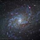 M33,                                darrell