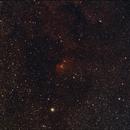 The Tulip Nebula, Sharpless 101 (SH2-101),                                Steven Bellavia