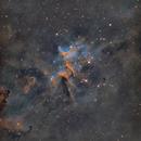 Melotte15   IC1805,                                Atsushi Ono