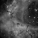 NGC2238 in Ha,                                Bill Mark