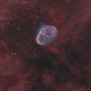 The Crescent Nebula,                                  Dave Boddington