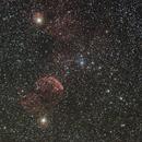Jellyfish Nebula (IC443),                                Steve_Ang