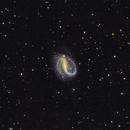 NGC 7479,                                Cheman