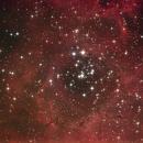 Rosetta Nebula,                                Alessandro Torchia
