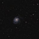 M101 campo amplio.,                                J.L.López Salas