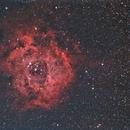 Rosette Nebula,                                Clem