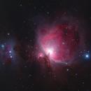 Orion Nebula,                                  Colin