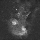 Flaming Star and Tadpole Nebula - Ha Widefield,                                Jonas Illner