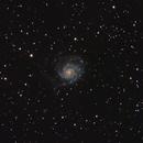 Messier 101 Pinwheel Galaxy,                                L. Lopez