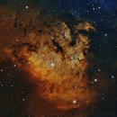 NGC 7822,                                John Travis
