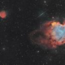 The Monkey Head Nebula, Sharpless 247 and a shooting star (or an Iridium flare ?),                                Nicolas Kizilian